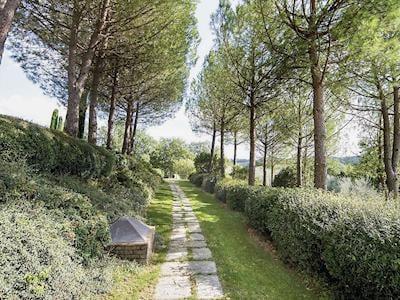 Garden and grounds | Le Palme, San Gimignano