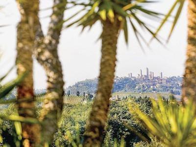 View | Le Palme, San Gimignano
