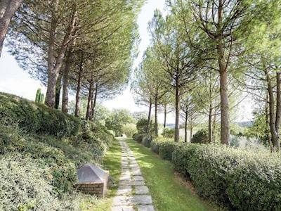 Outdoor | Le Querci, San Gimignano
