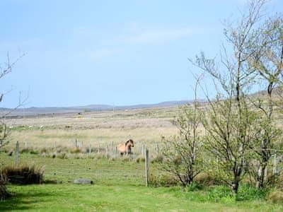 View | Stone Ewe Croft, Inverasdale near Poolewe