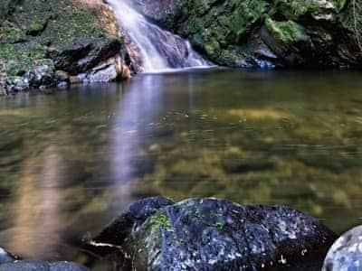 Surrounding area | Fasgadh, Sandbank, Argyll