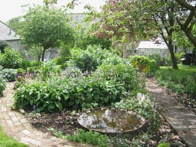 Garden | Steward Mews, Rothbury