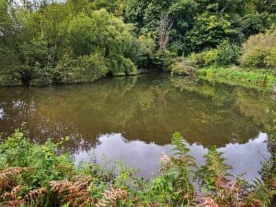 Fishing lake   Nethway Farm, Kingswear