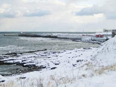 Farne Island View, Seahouses