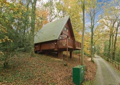 Holiday photo of Luxury Woodland Lodge Four