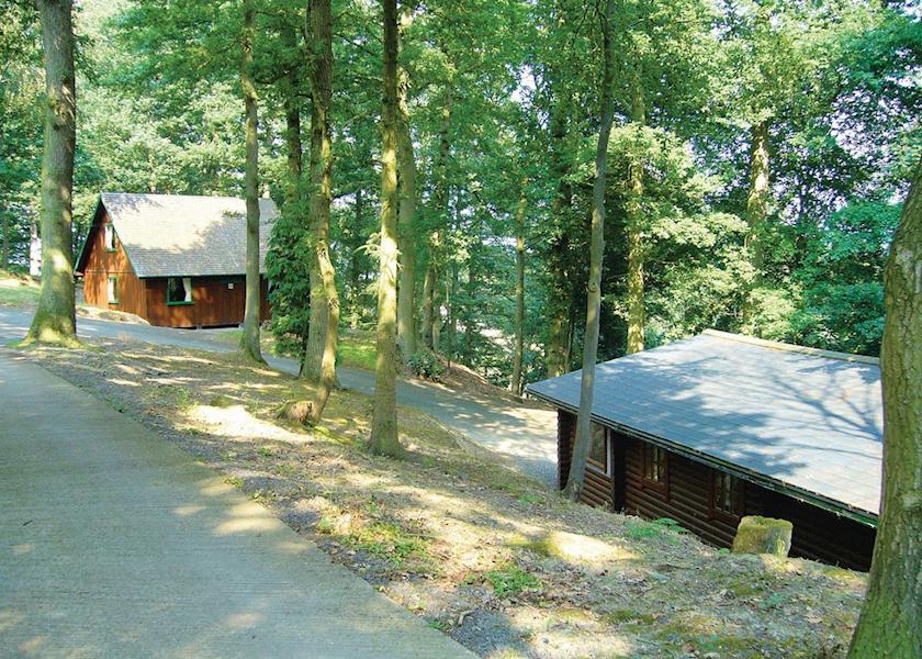 The woodland setting