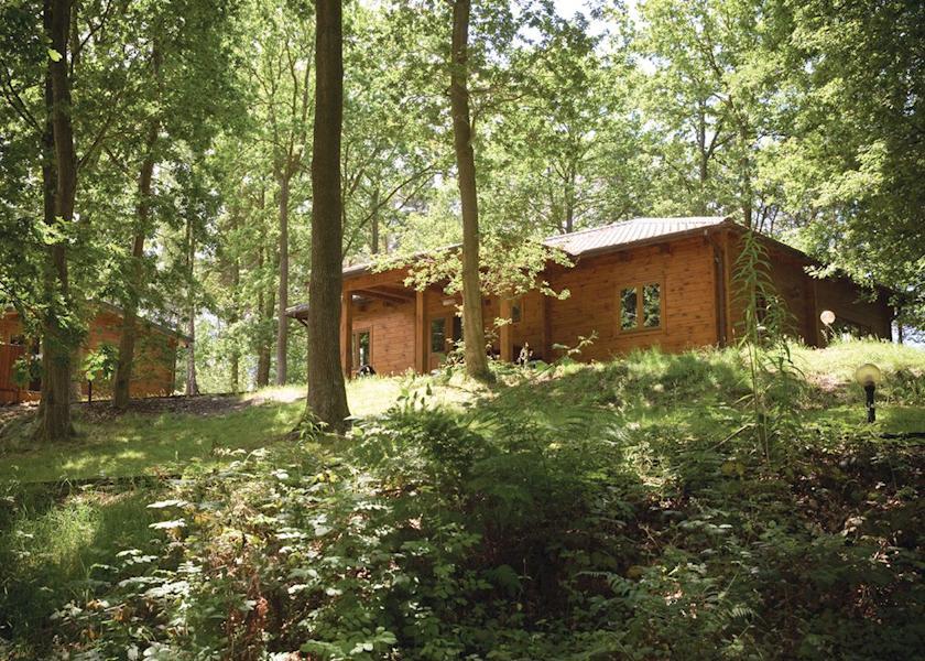Woodland Maple Lodge Deluxe